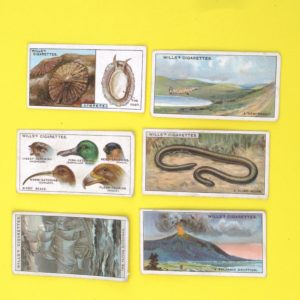 Vintage Wills Cigarette Cards Did You Know Series