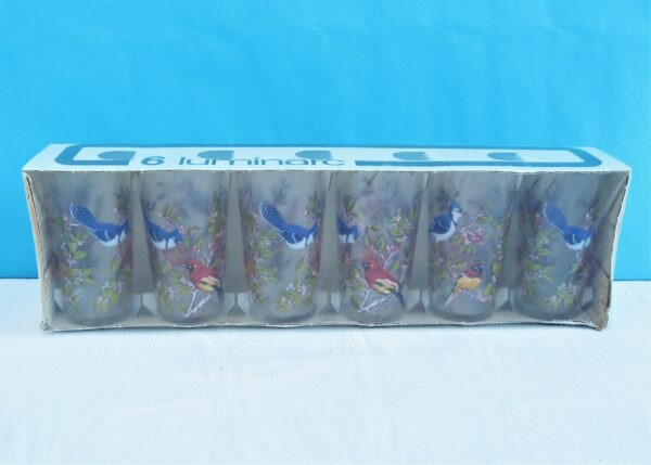 Vintage Luminarc Canada Glasses Tumblers x6 Bird Design Unopened Packaging 70s 80s